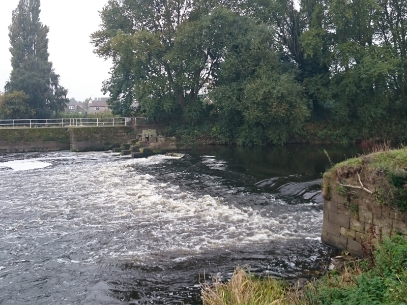 River Aire - Beal