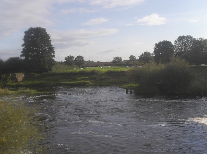 River Swale - Topcliffe